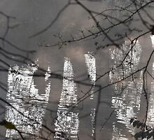 Lone Cyclist in The Mist by Carla Maloco