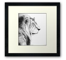 Real Lion Framed Print