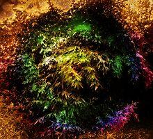 Colors of Nature by korymatu