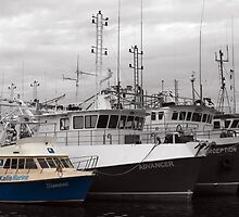 Fremantle Boats by kalaryder