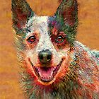 australian cattle dog by jashumbert