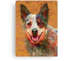 australian cattle dog Canvas Print