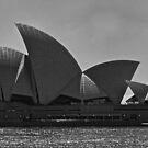 Opera House by Frank Falco