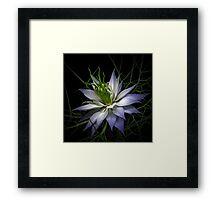 Blue Dream... Framed Print