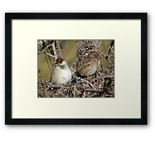 Sometimes You Can't See Eye to Eye Framed Print