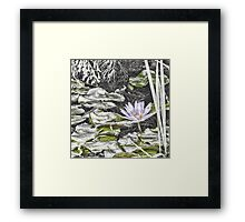 Faded water lily Framed Print