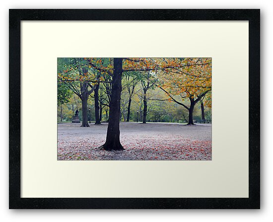 Old beech trees in autumnal park  by Anton Oparin