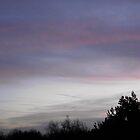 Sunrise by SophiaDeLuna