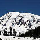 Mt. Rainier Summer Time  by lschnorr