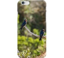 Two welcome swallows perched on a branch iPhone Case/Skin