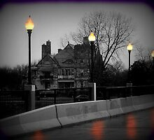 Lamp Post Light by Vince Scaglione