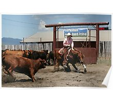 Hold on to your Horses Poster