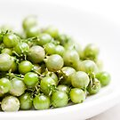 Coriander Berries by Hege Nolan