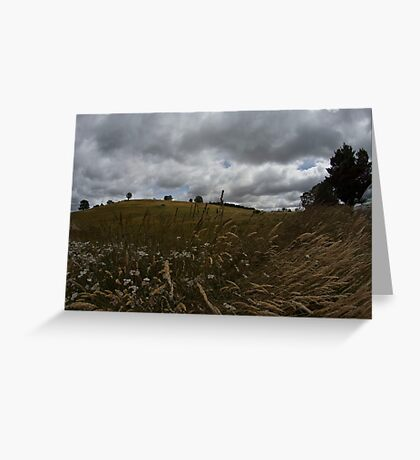 The central plains of Tasmania are known as Grasslands Greeting Card
