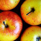 An apple a day by Katarina Kuhar