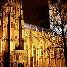 Christchurch Cathedral, Canterbury by rsangsterkelly