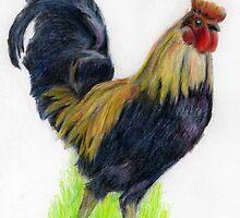 Cock of the walk by Sharon Herbert