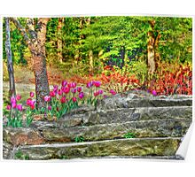 Tulips by the Step Poster