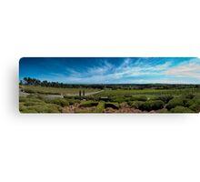 Tapestry Wines, McLaren Vale, South Australia Canvas Print