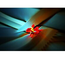 Petals and Blades Photographic Print