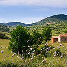 Abandoned farm house, Cañada de Benatanduz, Maestrazgo, Aragon, Spain by Andrew Jones