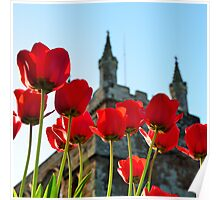 Tower, Tulips and Turrets Poster