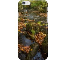 Maybeck Autumn Colours iPhone Case/Skin