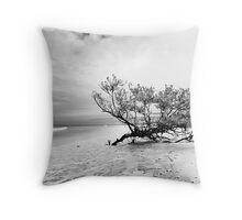 low key beach study Throw Pillow