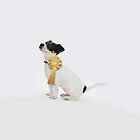 Proud Jack Russell Puppy - iPhone by Andrew Bret Wallis