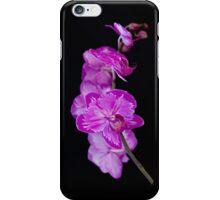 Purple Grace iPhone Case/Skin