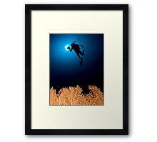 Underwater photograph of a diver swimming above an Anella Alcyonacea (soft corals) coral Framed Print