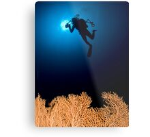 Underwater photograph of a diver swimming above an Anella Alcyonacea (soft corals) coral Metal Print