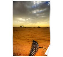 Desert Feather Poster