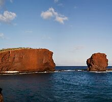 Puu Pehe (Sweetheart Rock) by Alex Preiss