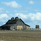 Old Barn- by Brenda Dahl