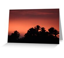 Morning At The Sierra Madre - Mañana En La Sierra Madre Greeting Card