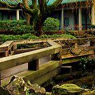 chinese gardens by voiceofmiranda