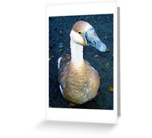 Going Quackers Greeting Card