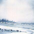 Snow storm by Neil Jones