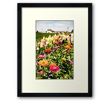 Spring into Summer Framed Print