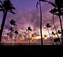 6:29 PM Hawaii Time by Alex Preiss