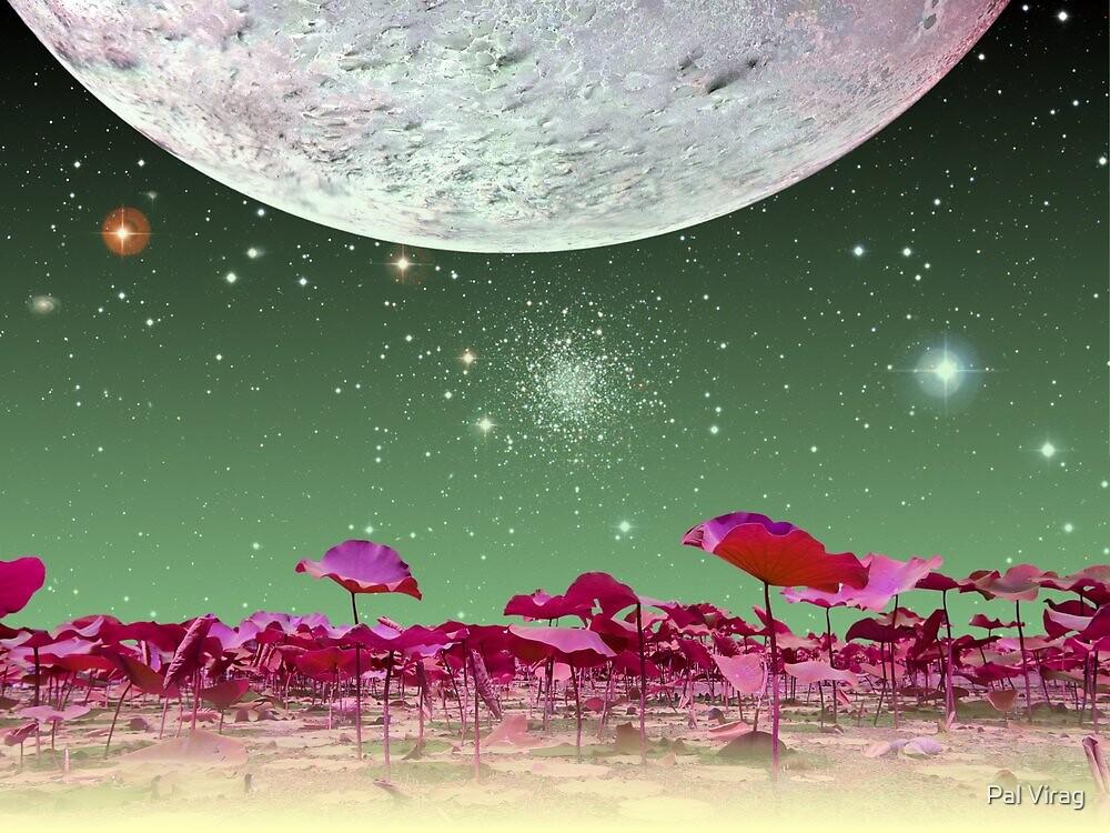 Alien World 1 by Pal Virag