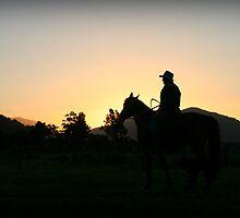 cowgeezer, south westland, nz by rina  thompson