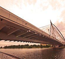 Seri Wawasan Bridge by Asif Patel