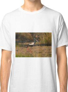 Sunset Stroll Classic T-Shirt