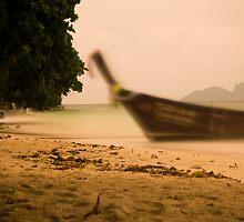 Ao Toh Ko beach, Phi Phi Island, Thailand by Rick  Senley