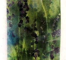delphiniums by mary braithwaite