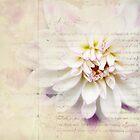 Dahila by Michelle Anderson