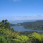 View from the Waitakere Ranges by Darren Bale