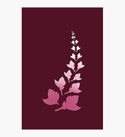 Cerise [Print and iPhone / iPod Case] Photographic Print